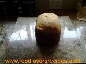 Broodmasjien brood